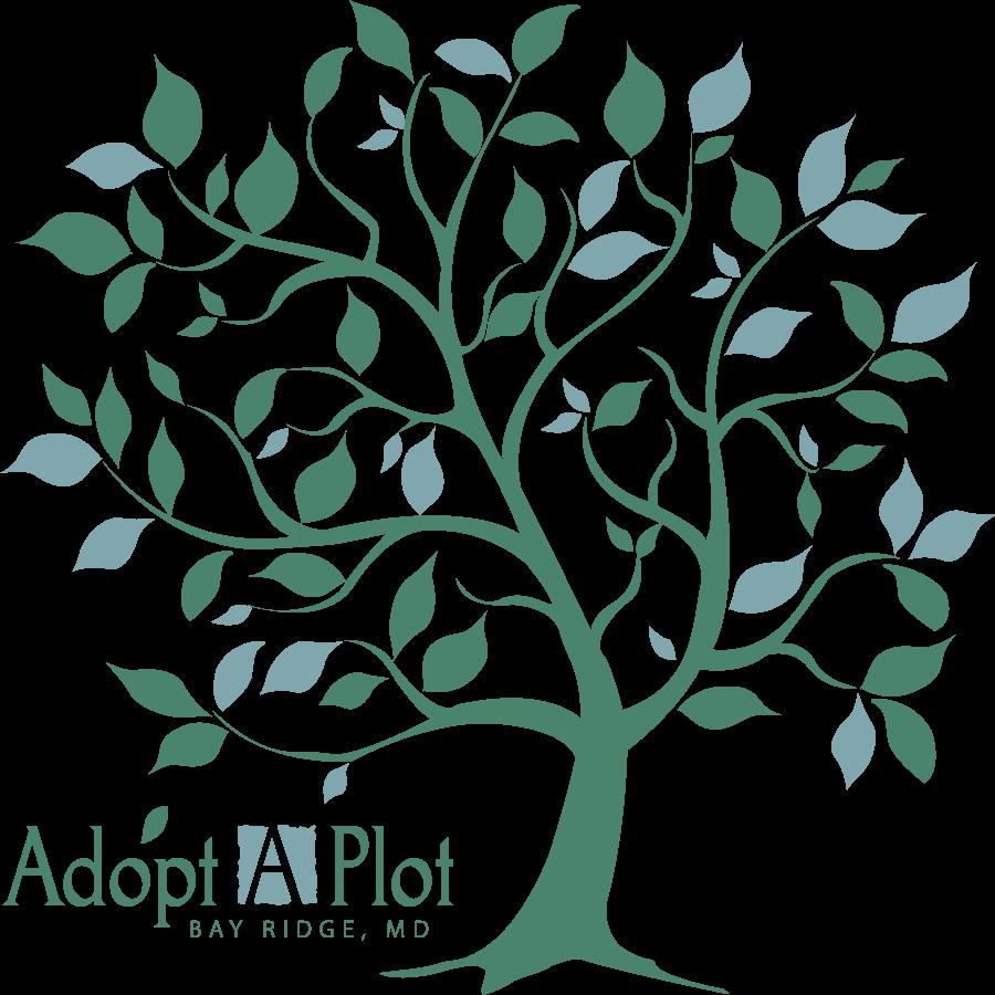 AAP_4c_logo